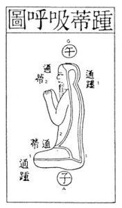 Secret of the Golden Flower - AlchemyLab com